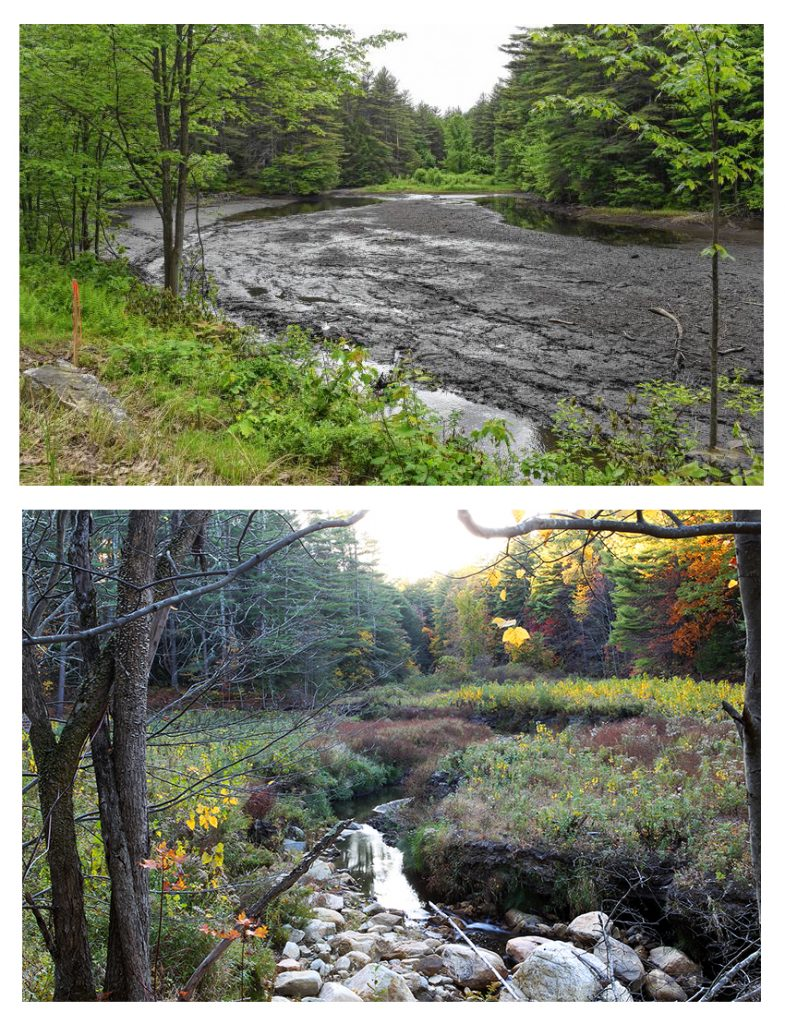 Before and after pictures of a dam removal project